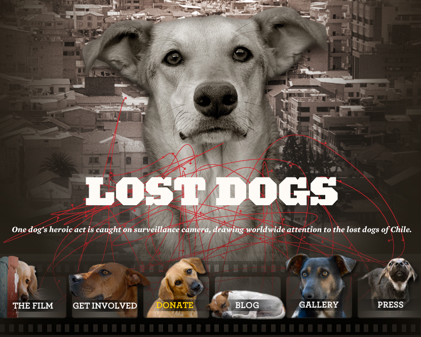 LOST DOGS Event in Los Angeles – Dec. 5th 2010